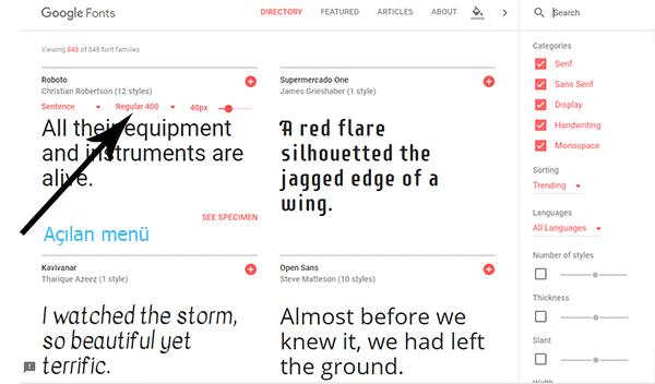 css google fonts kullanımı